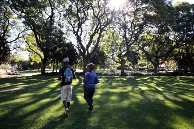 Norwood - Ivy Rd park